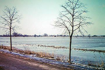 Blick vom Oberen Landweg nach Westen Richtung Allermöhe, Elbe Sturmflut 16.-17.2.1962