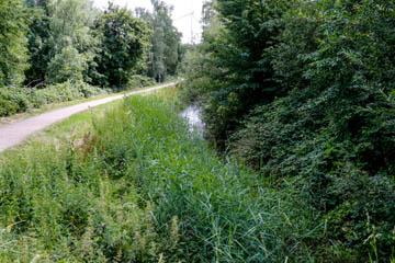 Kampbille an der Randersweide, Sicht nach Nettelnburg, Foto: Wasserverband Nettelnburg