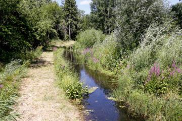 Nettelnburg Kampbille Wehrdeich 15 nach Nord, Foto von der Fußgängerbrücke, Wasserverband Nettelnburg